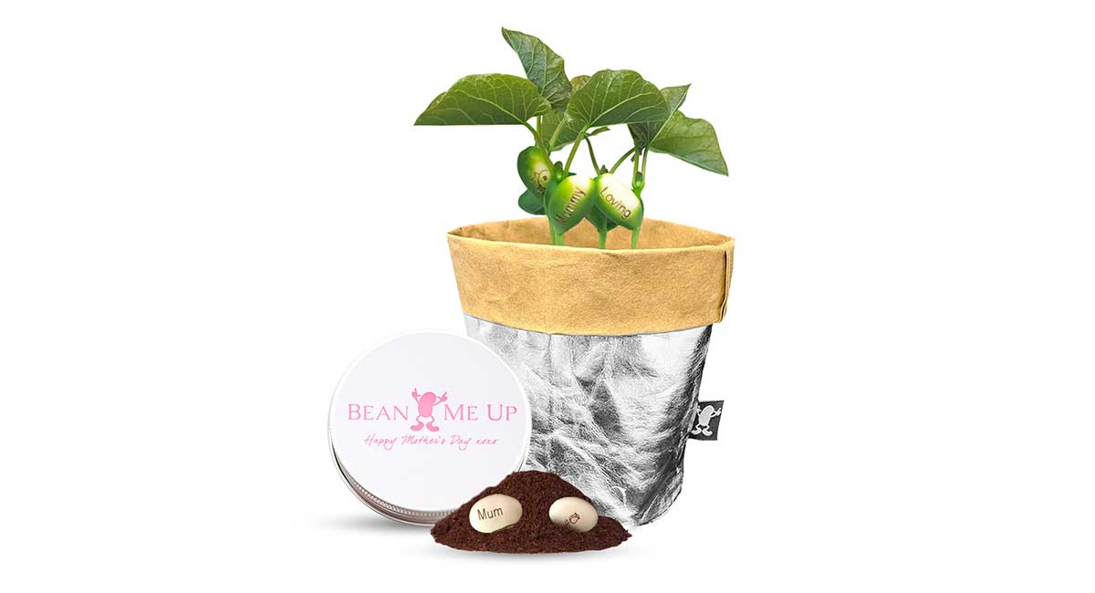 magic bean mothers day gifts