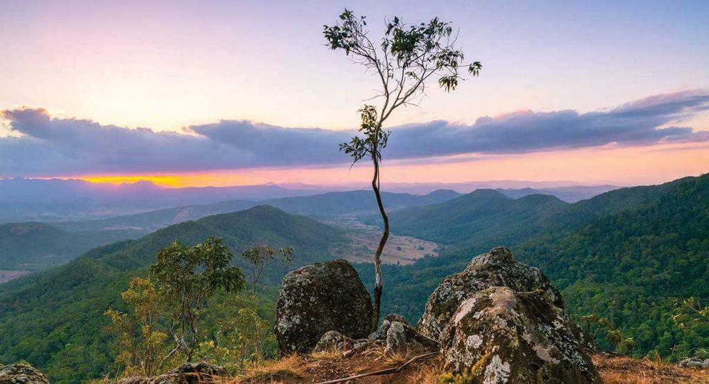 Sunset at Lamington National Park