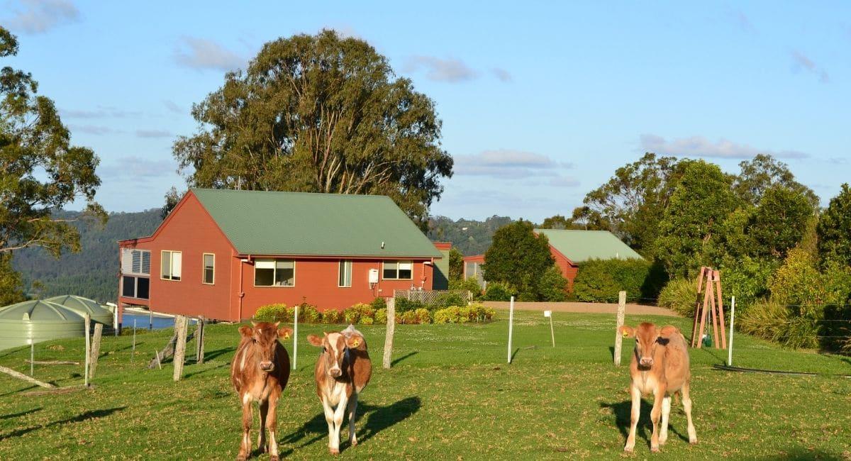Wittacork Dairy Cottages