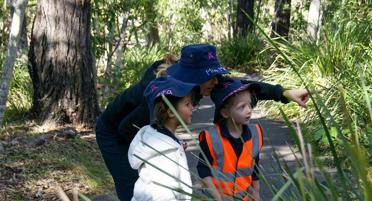 A-Head-Start-children-on-bushwalk